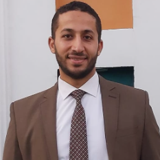 Ahmed Mekky - English to Arabic translator