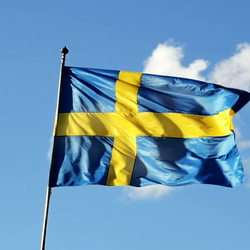 Malin Anderson - English to Swedish translator