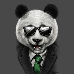 Classy Panda - inglés a árabe translator