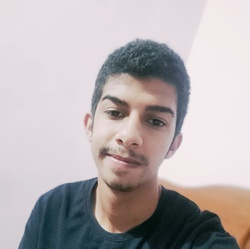 Mahmoud Mohamed - Arabic to English translator