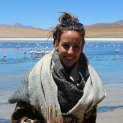 Delphine VDM - English to Dutch translator