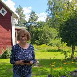 Annikki Kallay - angielski > szwedzki translator