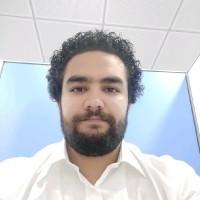 Hossam Fouad - Arabic to English translator