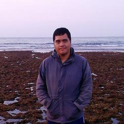 Angga Surbakti - inglés a indonesio translator
