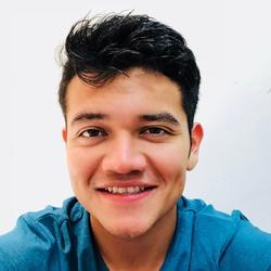 Alfredo Ibarra Vivas - English to Spanish translator