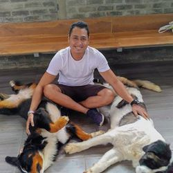Ignatius Rieza - inglés a indonesio translator