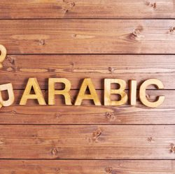 Mohamed Hady - English to Arabic translator