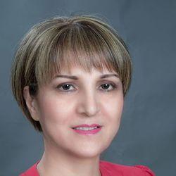 Sedi Minachi - English a Farsi (Persian) translator