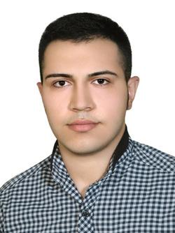 ramin karimi - English to Farsi (Persian) translator