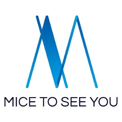MICE TO SEE YOU - angielski > polski translator