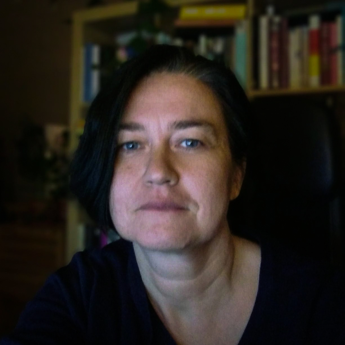 Sylva Ficova - English to Czech translator