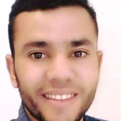 Mohamed Selmi - francés a inglés translator