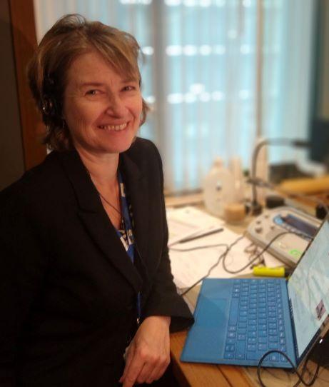Carol Sykes - español a inglés translator