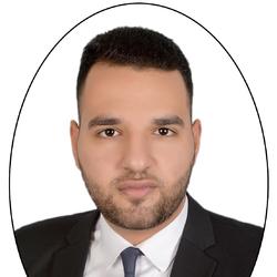 Hady Lotfy - English to Arabic translator