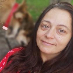 Andreea Câmpeanu - inglés a rumano translator
