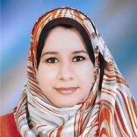 aml kamel - inglés a árabe translator