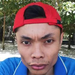 daniel wicaksono - inglés a indonesio translator