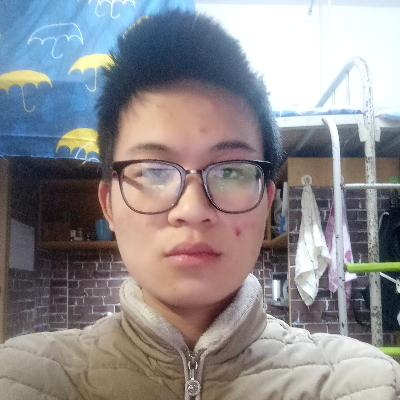Zhu L.