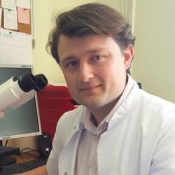 Nikola Bijelić, MD, PhD - English a Croatian translator