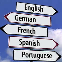 Ines Matos - Spanish to Portuguese translator