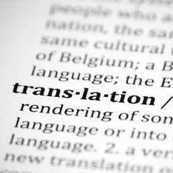 Vertaling Centraal - neerlandés a italiano translator