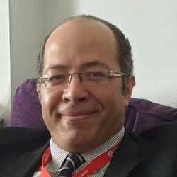 Ashraf Aly - inglés al árabe translator
