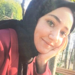 Beyza Gecu - Turkish to English translator