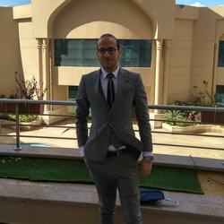 Mr.Ahmed El-Ashry - Arabic to English translator