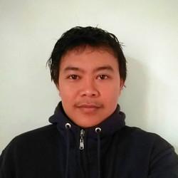 Aji Kurniawan - inglés a indonesio translator