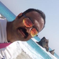 Amir Samy - árabe translator