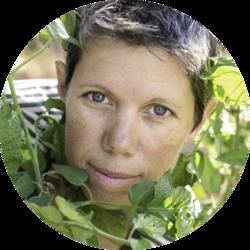 Sara Massons - inglés a francés translator