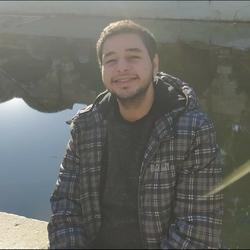 Hussein Alsaleh - inglés a árabe translator