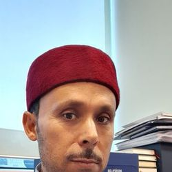 Habib Amri - inglés a árabe translator