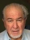 Roger Wilkinson - portugués a inglés translator