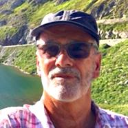 Don Green - italiano a inglés translator