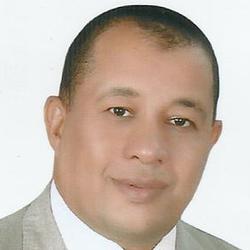 ahmed badawy - alemán a árabe translator