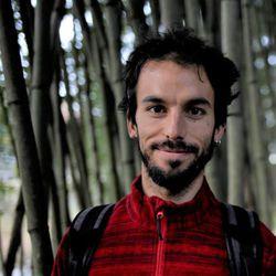 Federico Santini - angielski > włoski translator