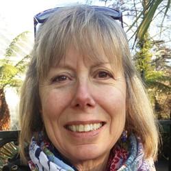 Kari Koonin - alemán a inglés translator