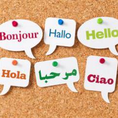 Mohammad Ezzeldeen - inglés a árabe translator